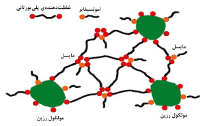 غلظتدهندههای تجمعی جدید و کاربرد آنها در پوششهای آبپایه و پرجامد  (بخش دوم)